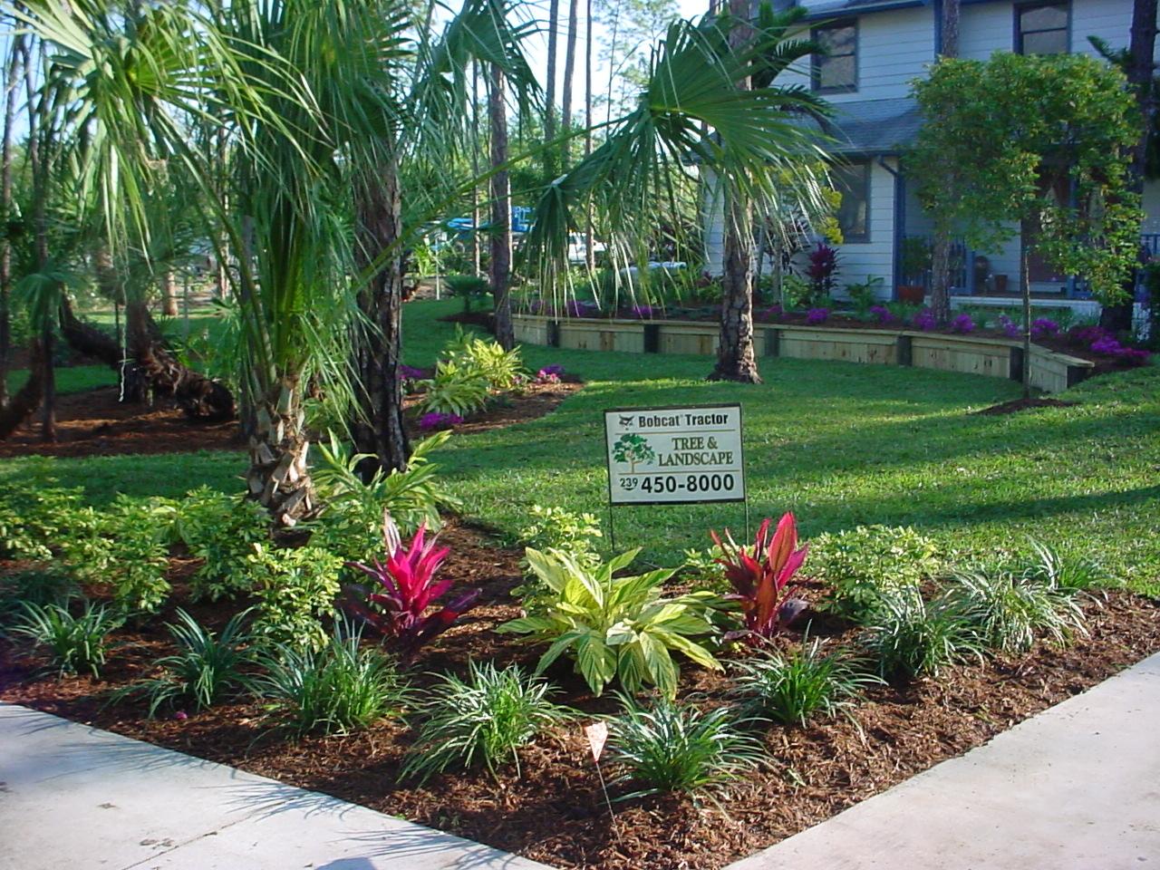 Bobcat tractor tree and landscape naples fl 34104 for Home landscape design suite 8 0 link
