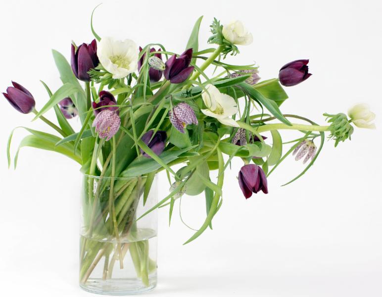 Sophie Dorval Atelier Floral