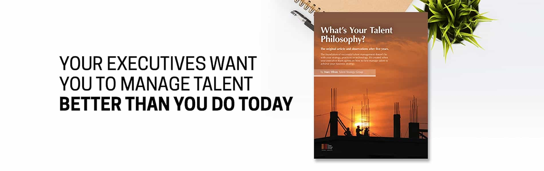 Talent Strategy Group image 2