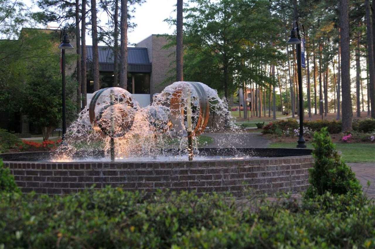 Hampton Inn Aiken image 14