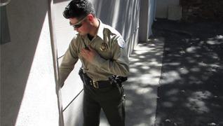 International Protective Service, Inc image 0