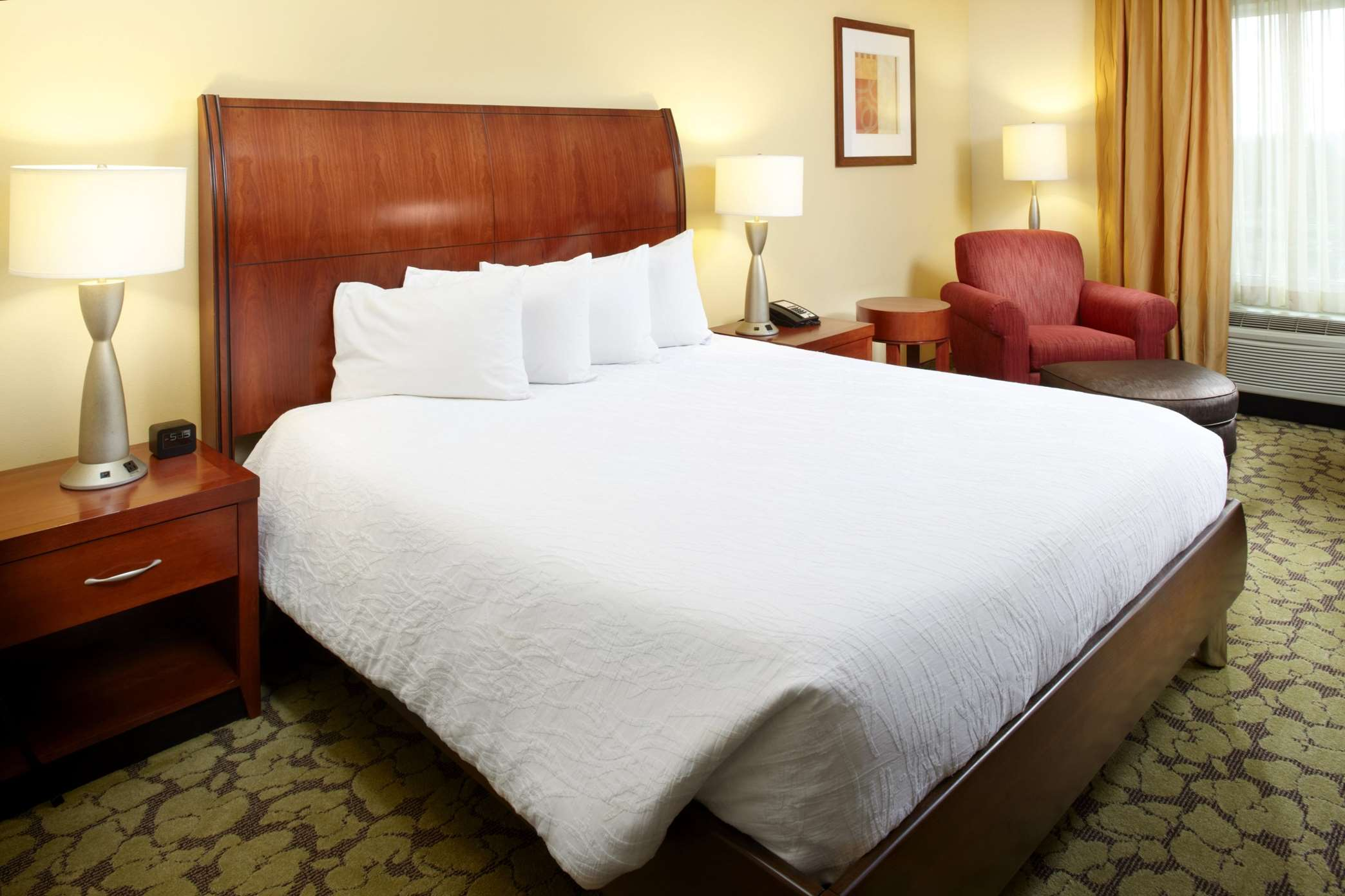 Hilton Garden Inn Dallas/Arlington image 43