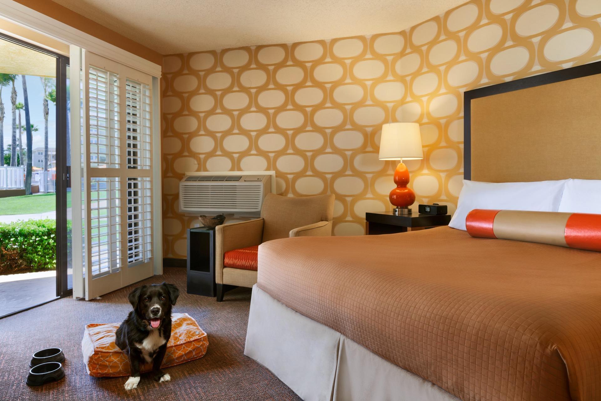 SeaCrest OceanFront Hotel image 3