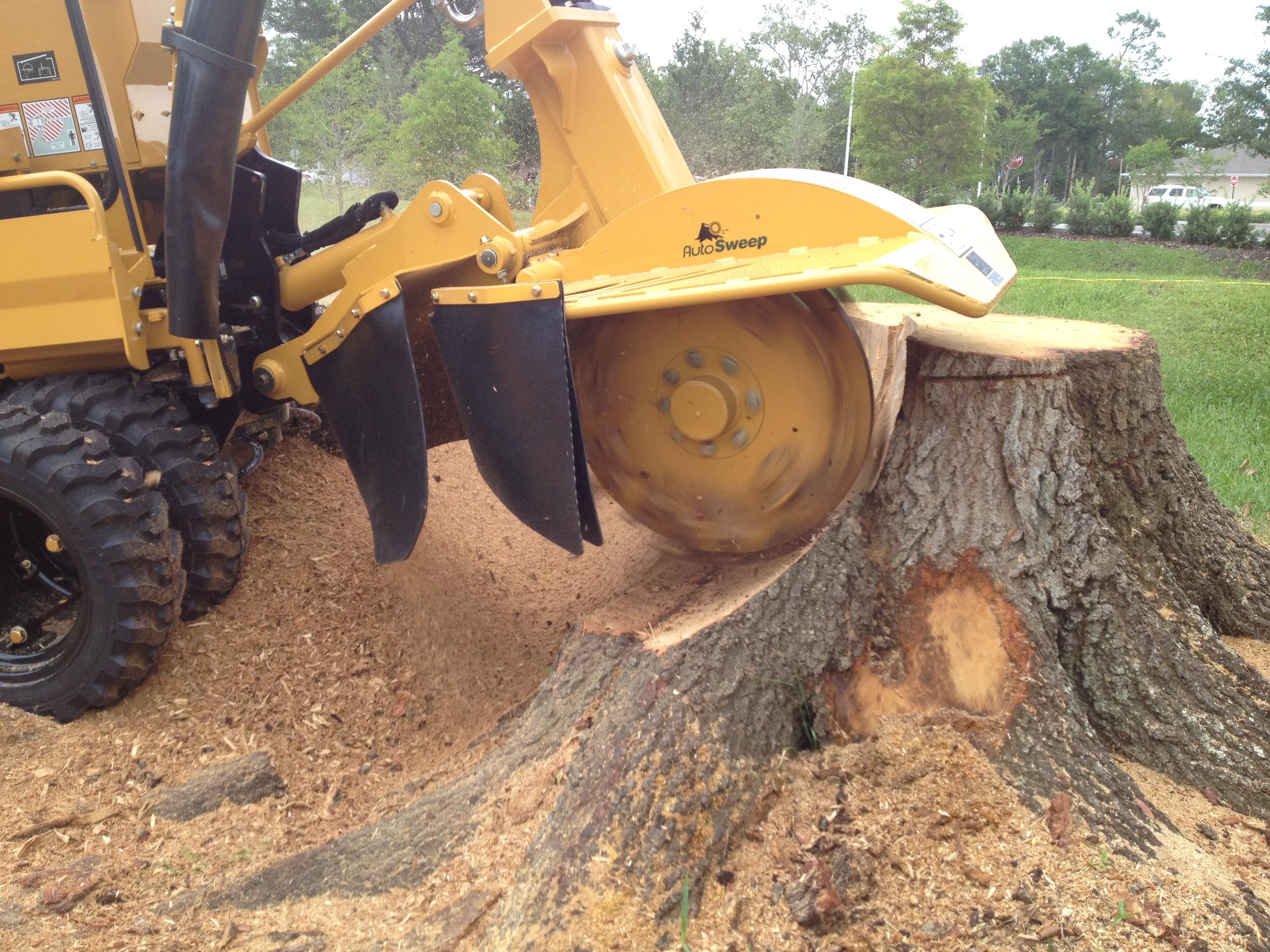Just The Stump - Winnebago, IL 61088 - (815)222-7801 | ShowMeLocal.com