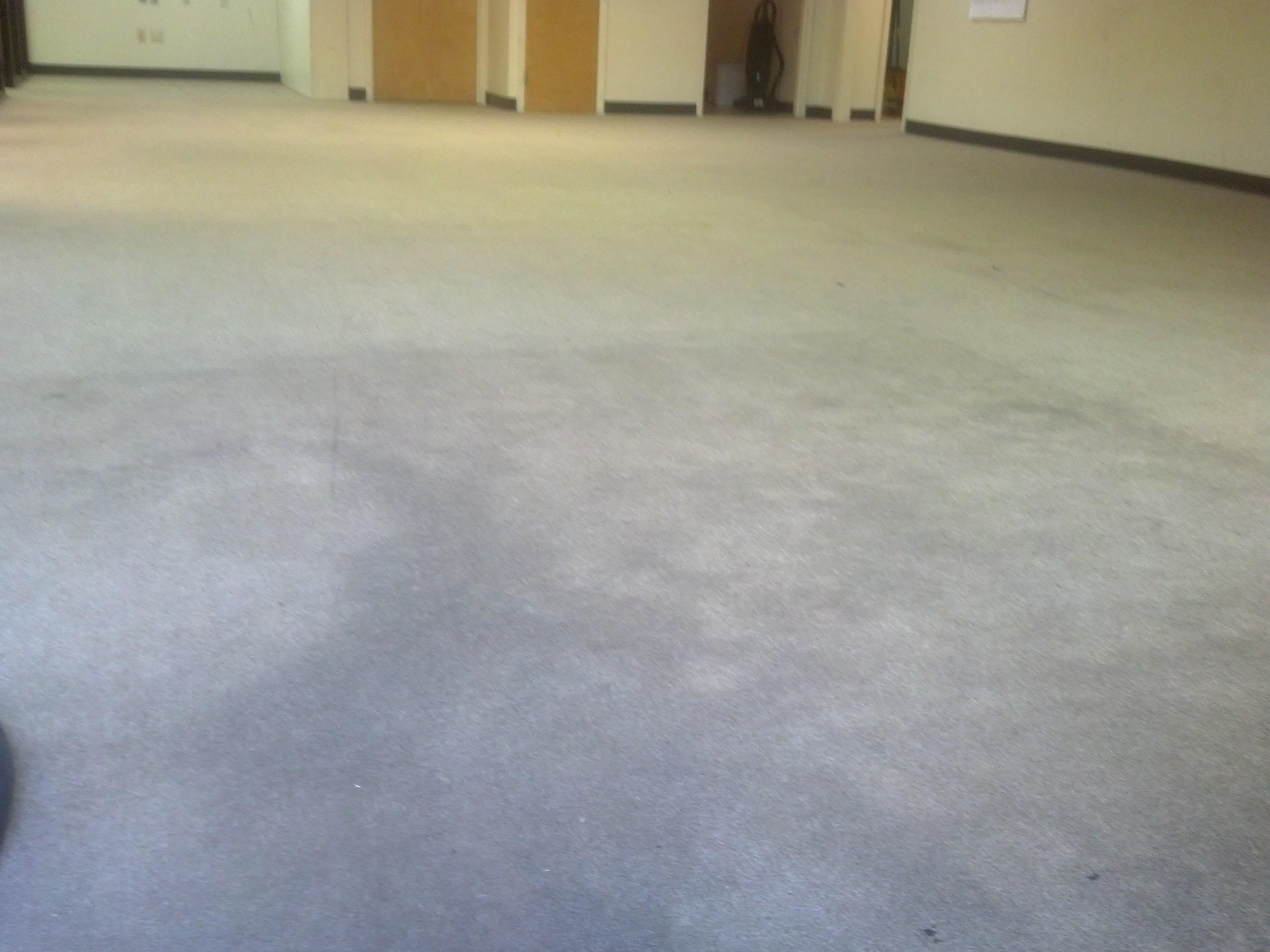 In-process cleaning of a typical commercial grade carpet.  We can get the same great results for you.