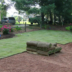 Lawngevity Landscaping & Maintenance, LLC image 2