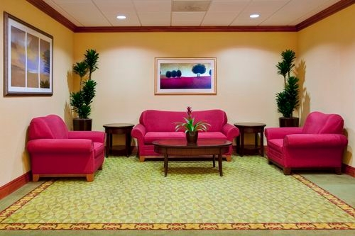 Holiday Inn Express & Suites St. Petersburg North (I-275) image 2