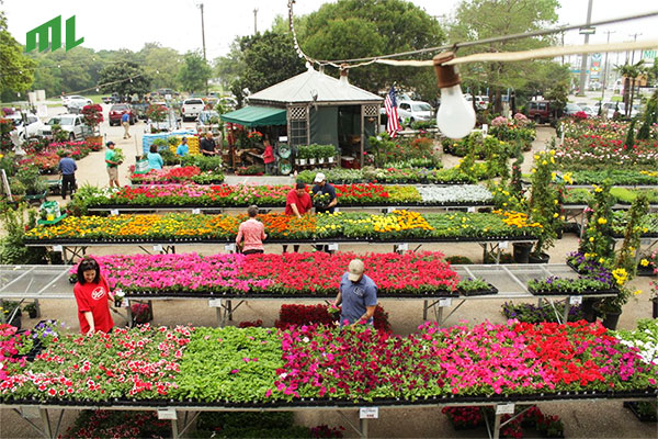 Milberger S Landscaping And Nursery In San Antonio Tx 78247 Citysearch