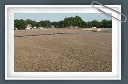 Service Roofing Co. image 3