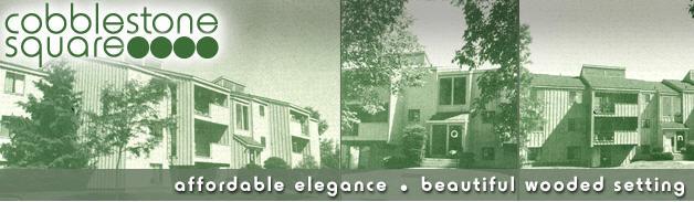 Cobblestone Square image 3
