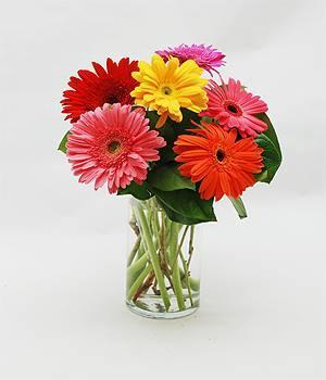 Norfolk Florist image 2