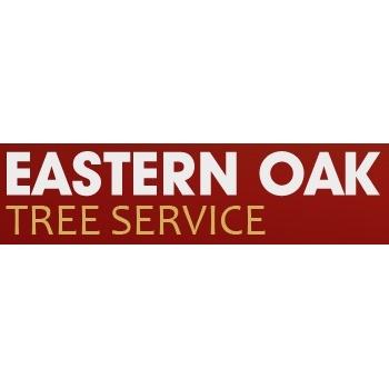 Eastern Oak Tree Service image 0