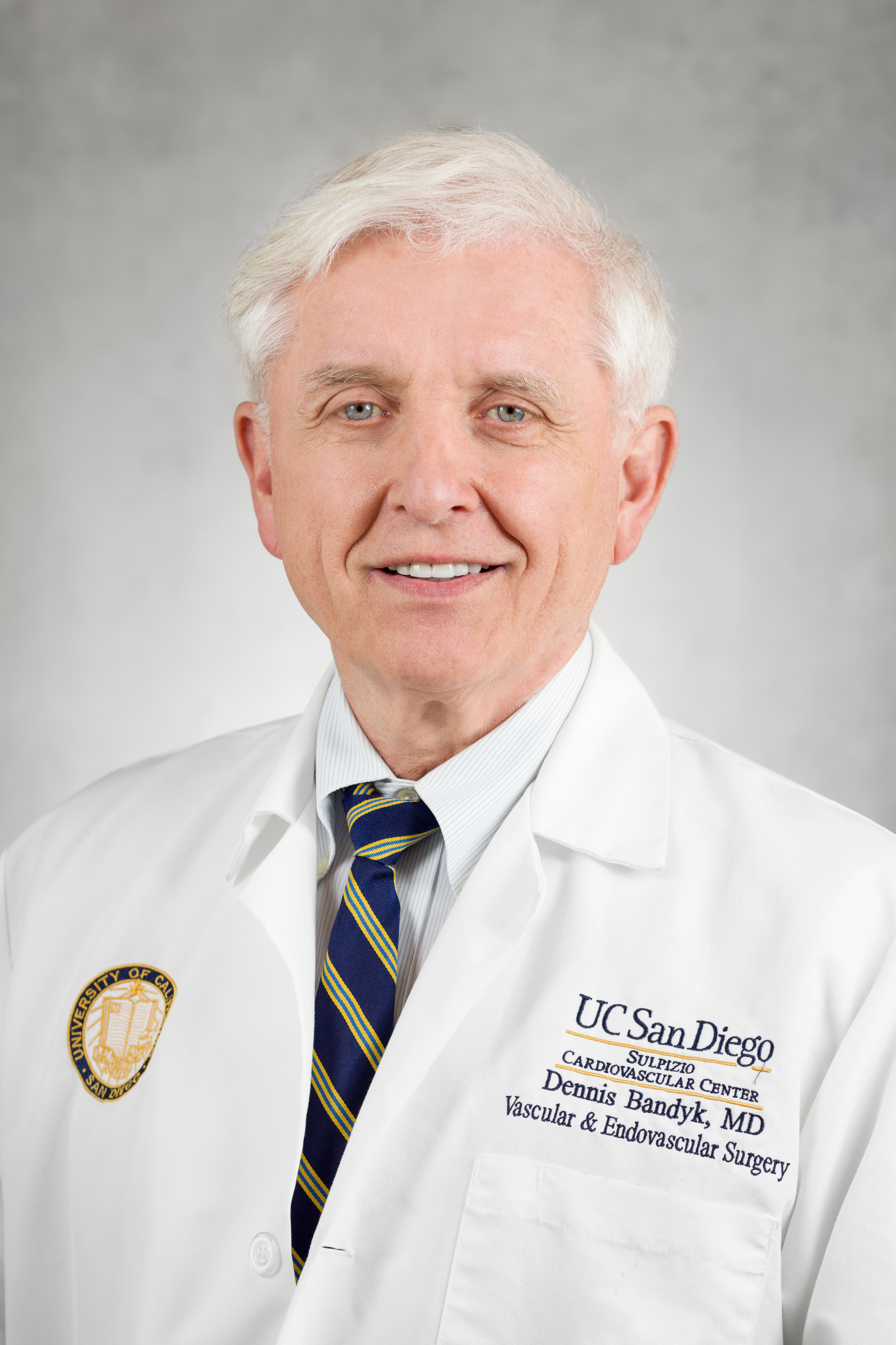 Image For Dr. Dennis  Bandyk MD