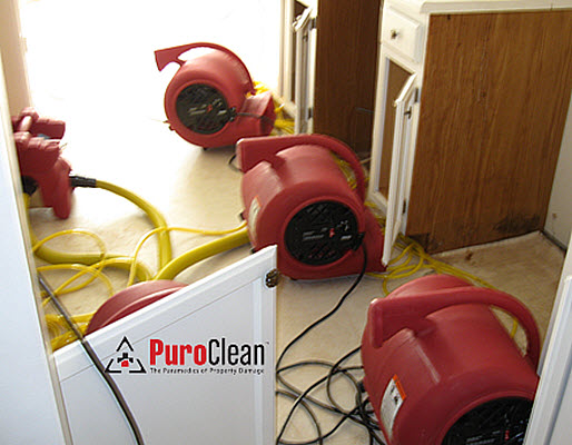 PuroClean Emergency Recovery Services image 1