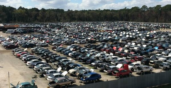 Ace Auto Salvage >> Ace Pick A Part - U Pull It - Salvage Yard - Jacksonville ...