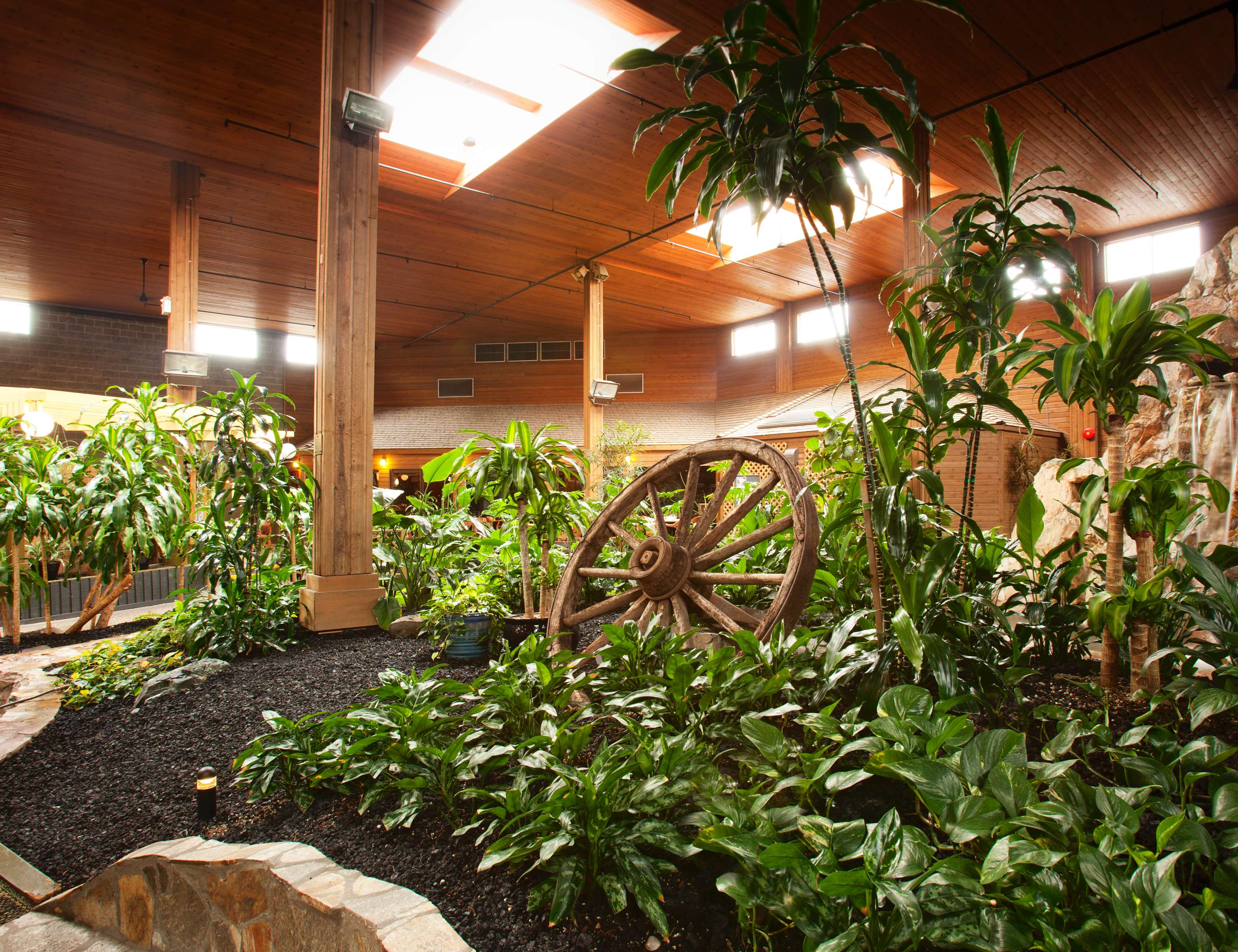 Best Western Rainbow Country Inn in Chilliwack: Tropical Garden View