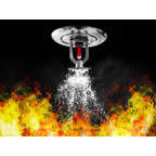 Daly  Fire Protection, LLC