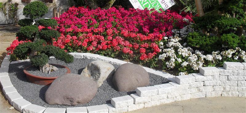 Vivai moro sergio giardiniere giardinaggio for Giardini zen da esterno