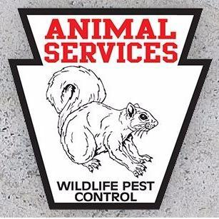 Animal Services Wild Life Pest Control image 9