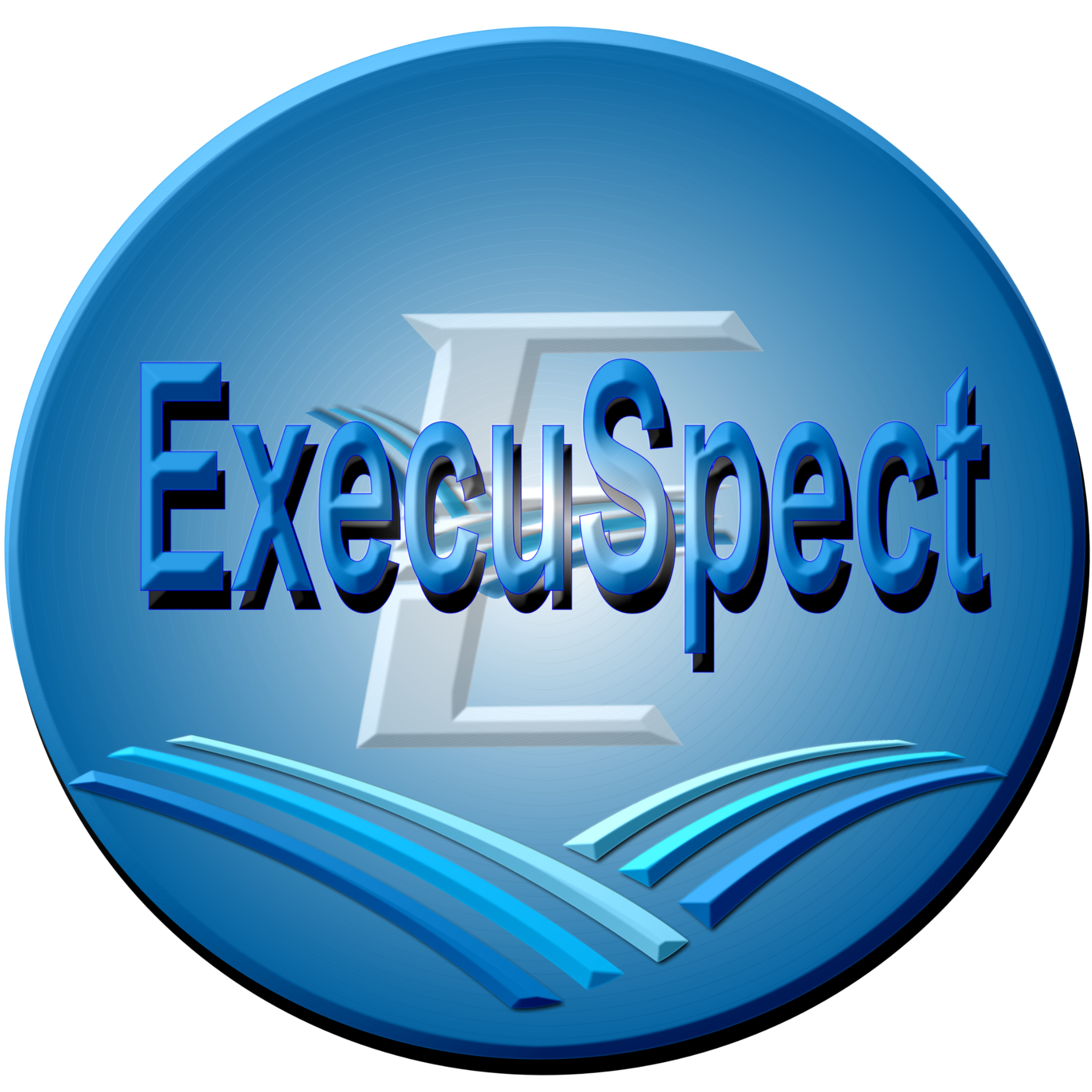 Execuspect Business Consulting