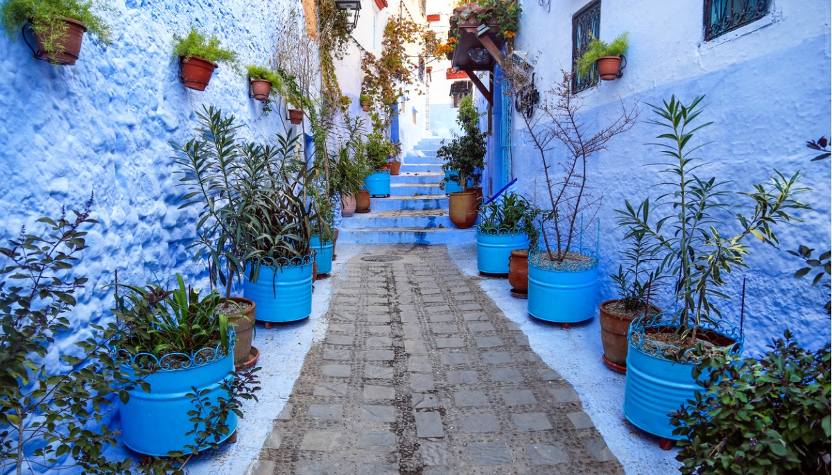 Destination Morocco image 10