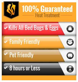 Arizona Heat Pest Services image 9