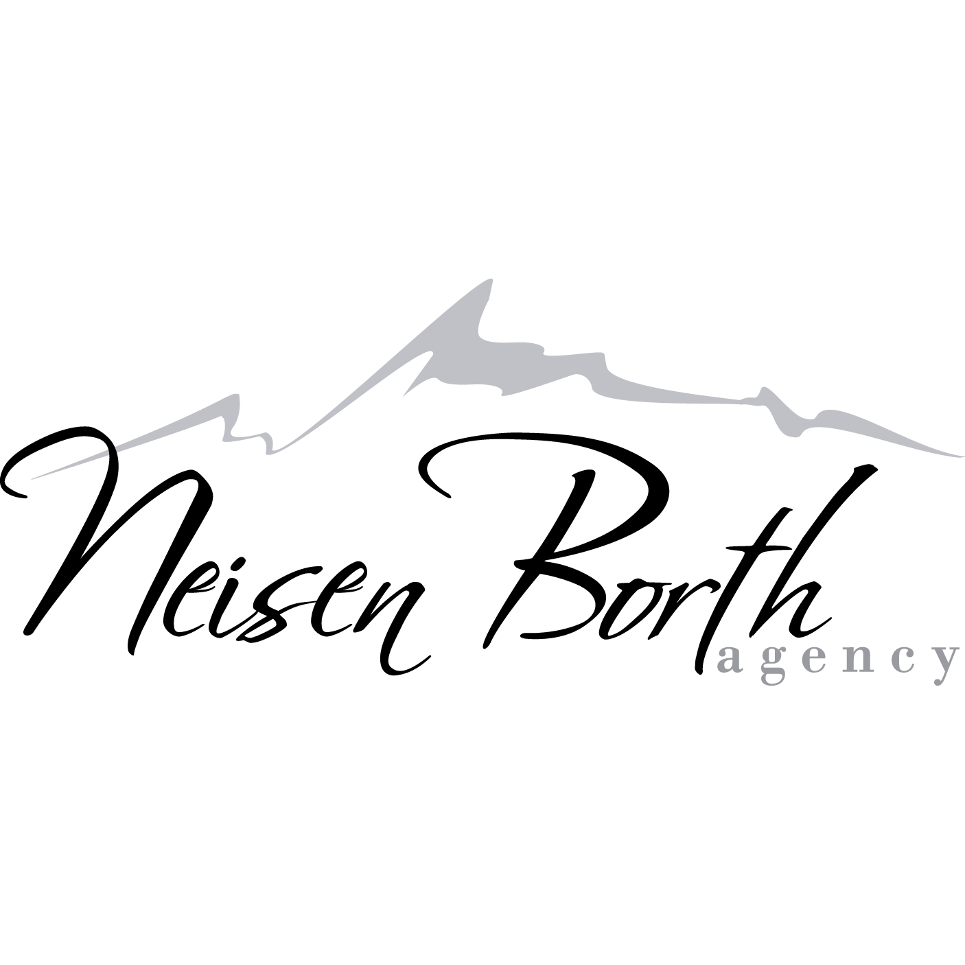 Neisen Borth Insurance