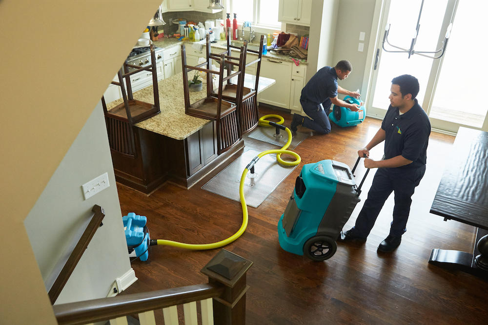 ServiceMaster Cleaning & Restoration Services image 7
