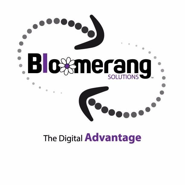 image of Bloomerang Solutions