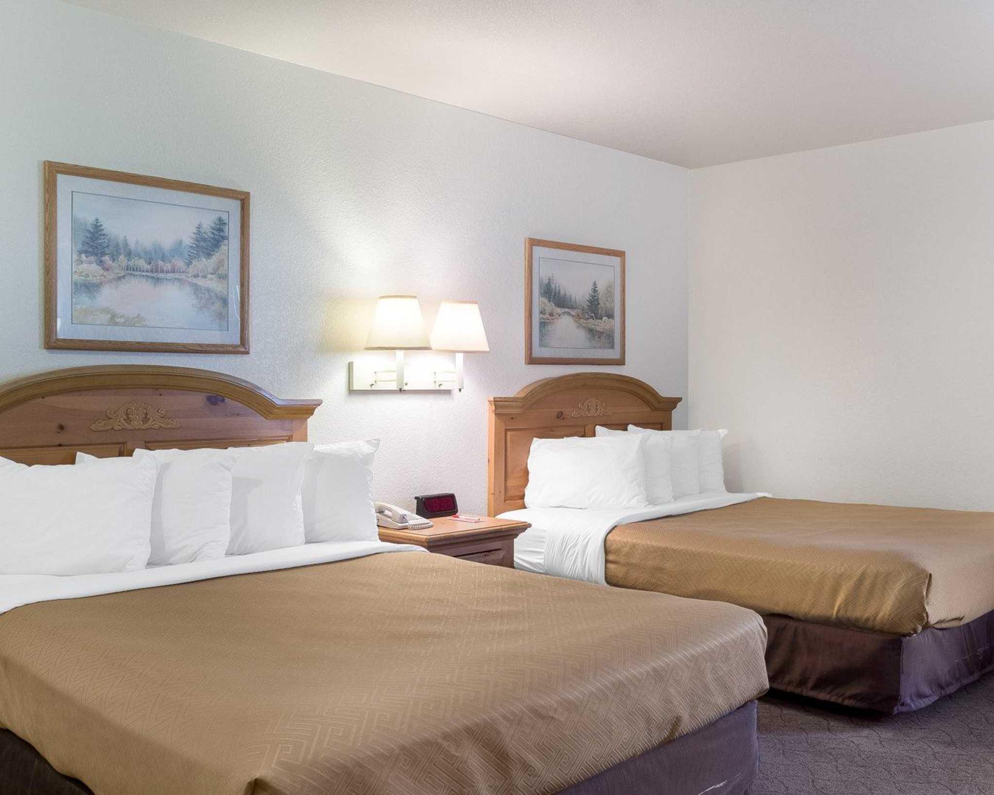 Econo Lodge Near Mt. Rushmore Memorial image 13