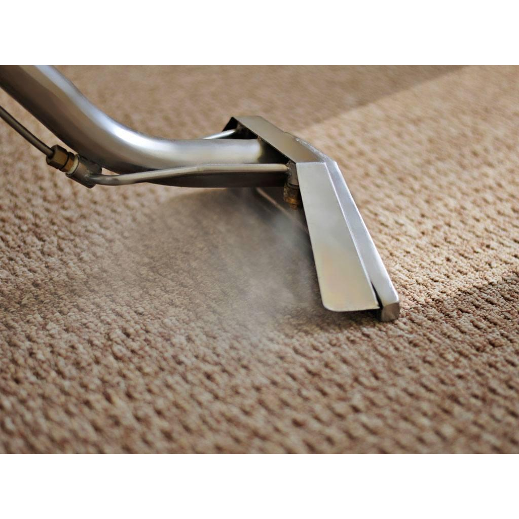 North of the Bay Carpet Care image 3