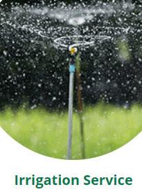 Dreamscapes Irrigation Inc