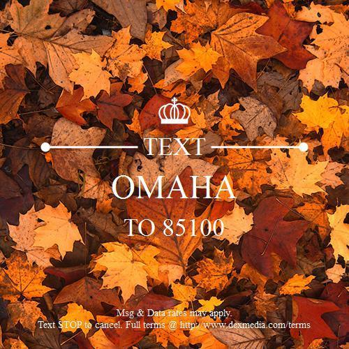 Omaha Auto Spa