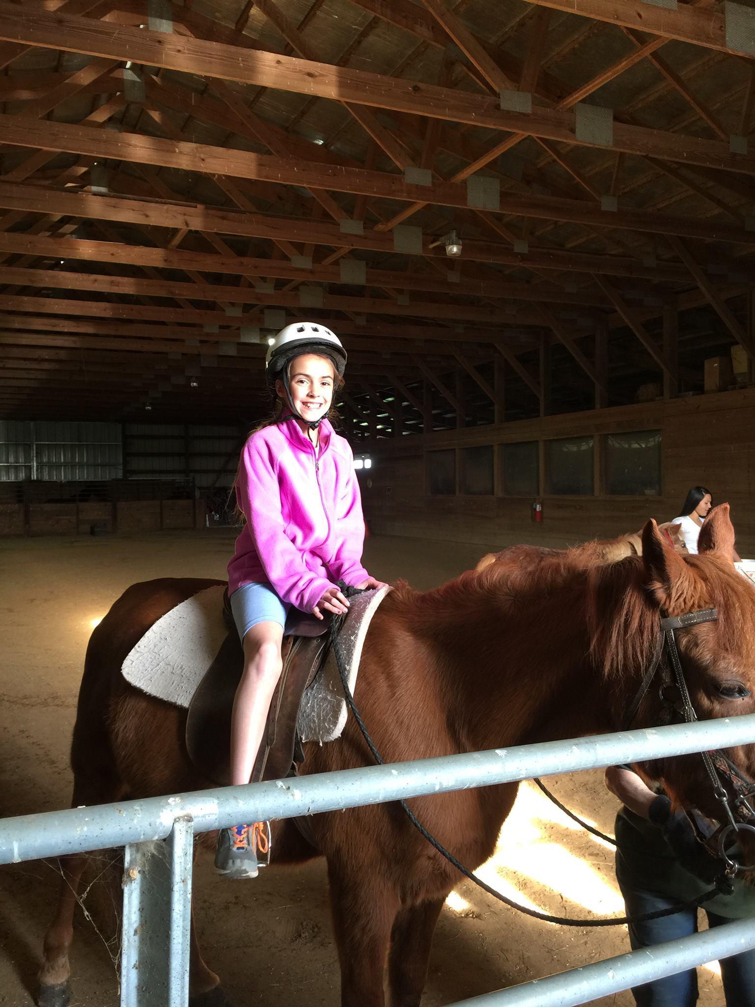 Wright-Way Equestrian Center Inc. image 6