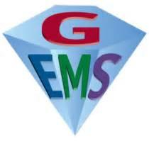Geriatric Education for Emergency Medical Services. This course help the student broaden their knowledge base with geriatric patients