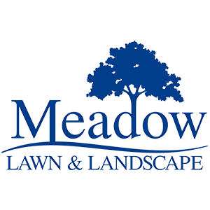 Meadow Lawn and Landscape