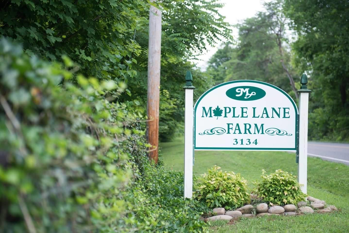 Maple Lane Farm image 0
