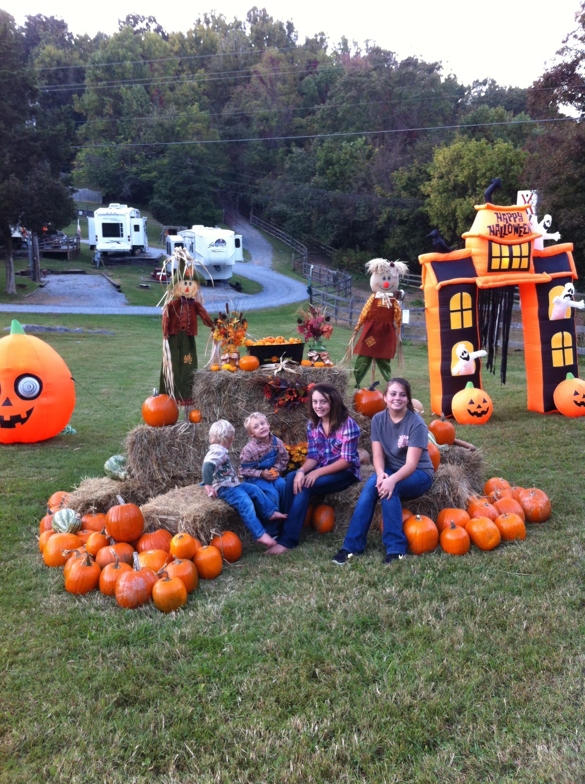 Bristol / Kingsport KOA Holiday in Blountville, TN, photo #47