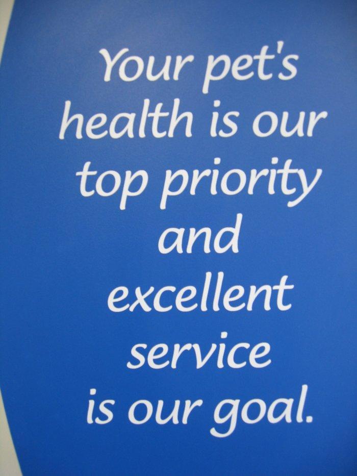 VCA Beech Road Animal Hospital image 4