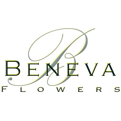 Beneva Flowers & Plantscapes