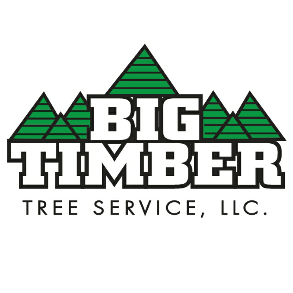 Big Timber Tree Service LLC
