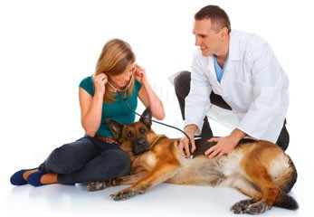 We've developed a highly responsive, caring team of certified veterinarians and trained support professionals capable of servicing all your pet's health care, grooming and boarding needs from birth and throughout his or her entire life.  We offer specialized services, ranging from the routine annual physical and shot updates to surgery and dental care. We also offer on-site grooming and boarding facilities.