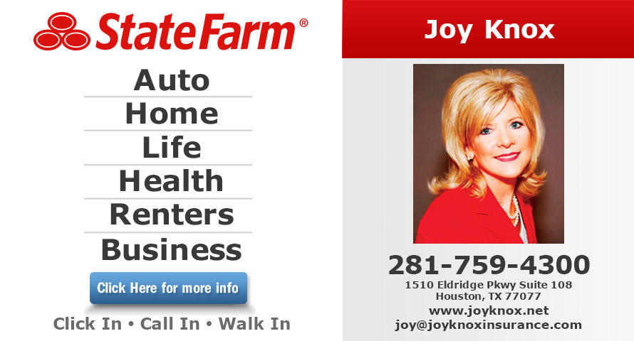 Joy Knox - State Farm Insurance Agent image 0
