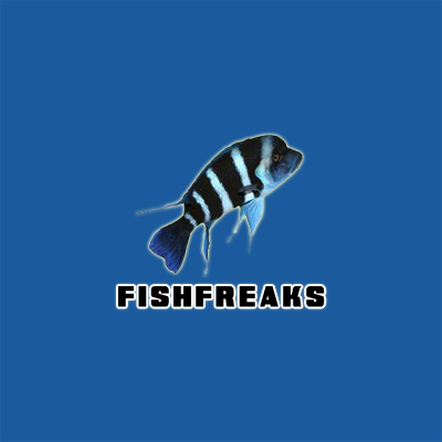 Fish Freaks