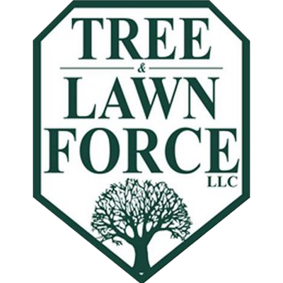 Tree And Lawn Force