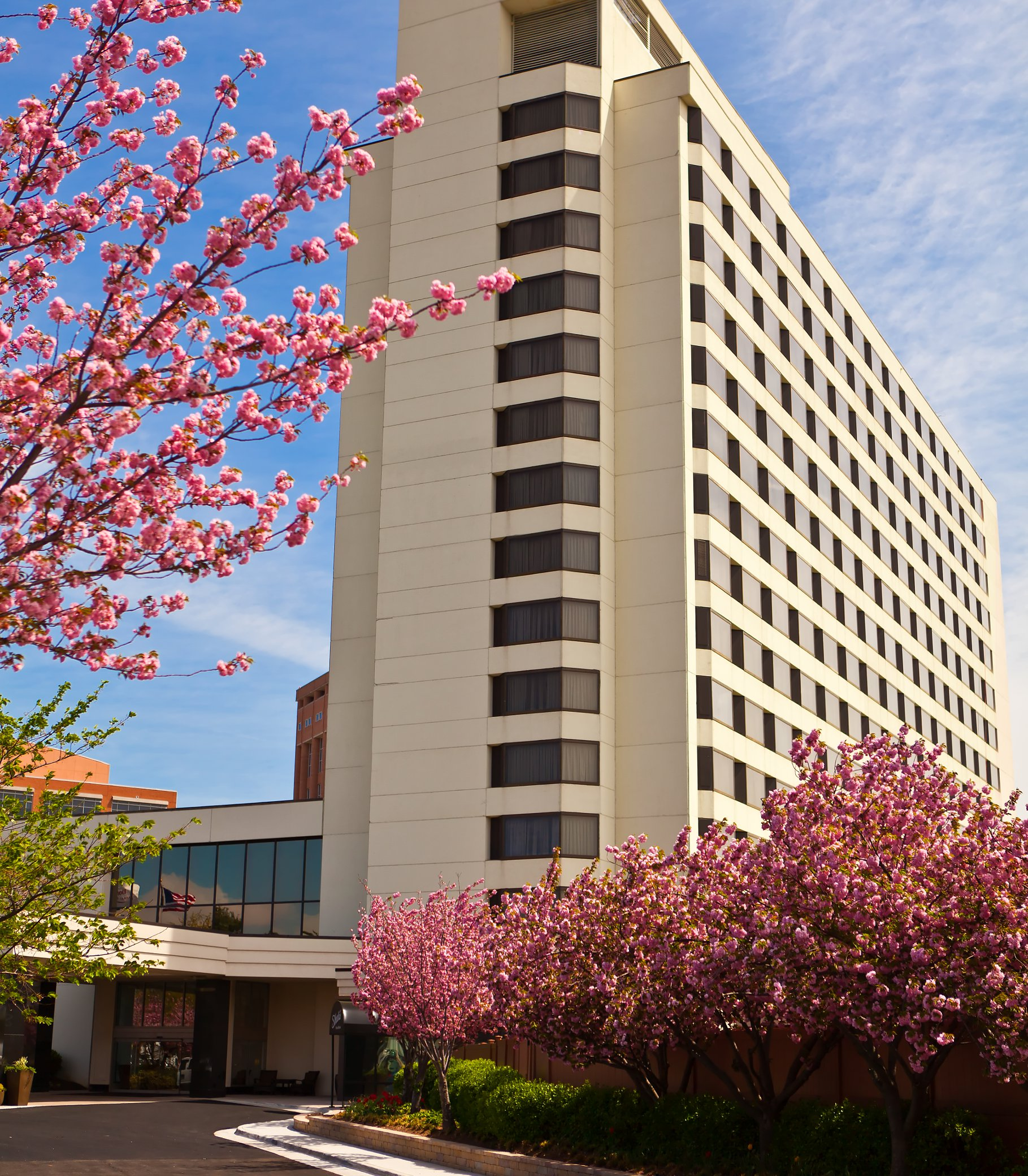 Tysons Corner Marriott image 19