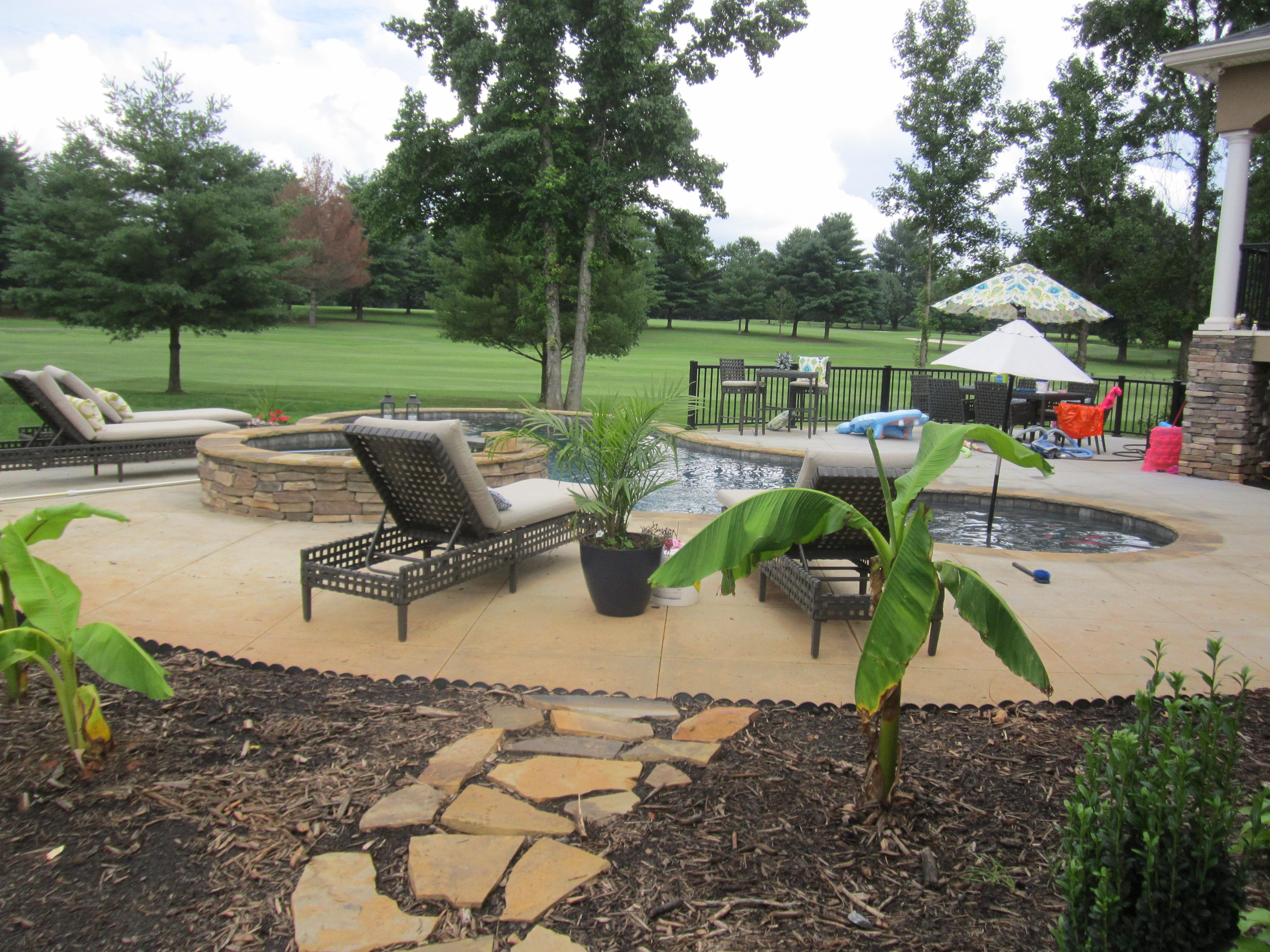 Custom Pools & Spa image 3