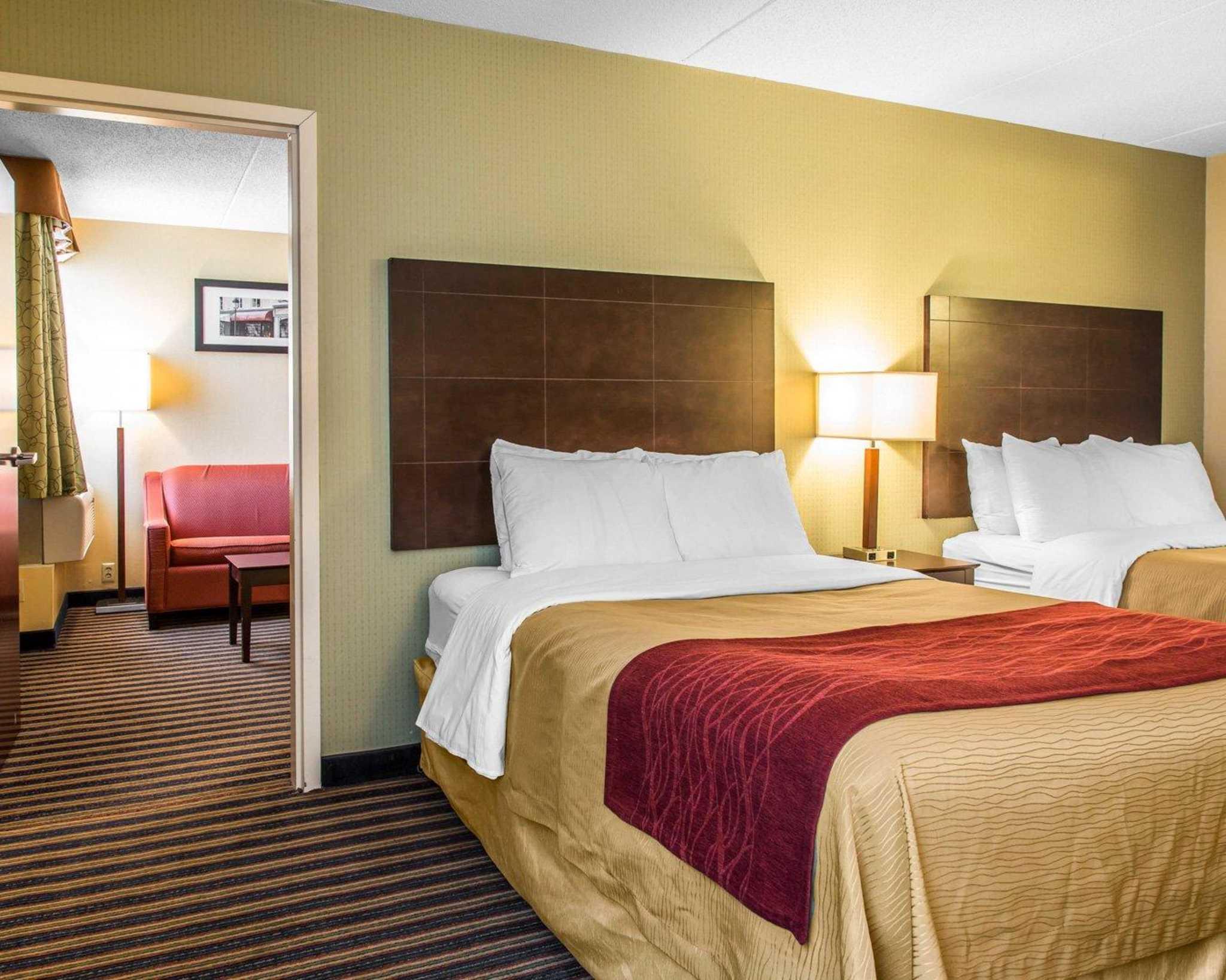 Comfort Inn & Suites East Hartford - Hartford image 0