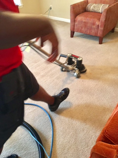 Stains Be Gone Carpet Cleaning, LLC image 2