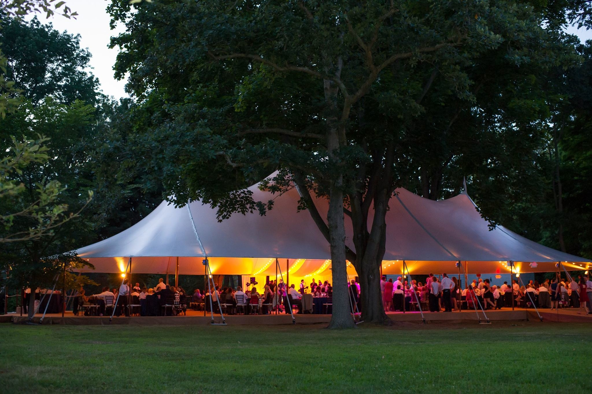 Abbey Tent & Party Rentals image 0